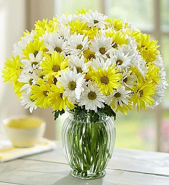 1-800-Flowers – Yellow & White Daisy Bouquet, 12-24 Stems – 24 Stems with…