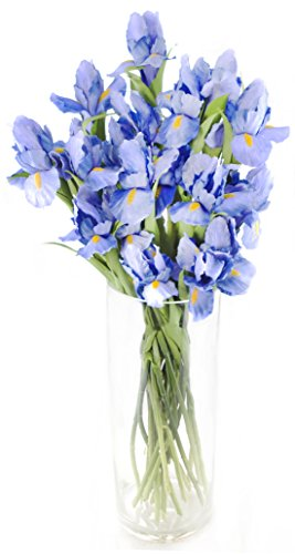 Atlantic Iris Bouquet – The KaBloom Collection Flowers With Vase