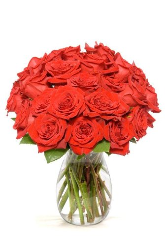 24 Long Stem Red  Roses – With Vase