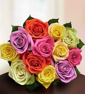 1-800-Flowers – One Dozen Assorted Roses – Bouquet Only