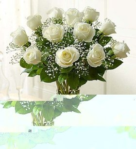 1-800-Flowers – Rose Elegance Premium Long Stem White Roses – 12 Stem White…