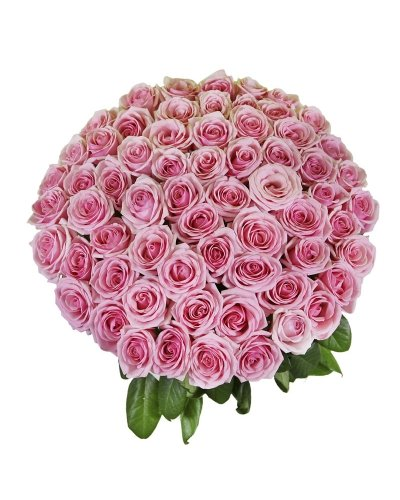 50 Birthday Farm Fresh Pink Roses By justFreshRoses