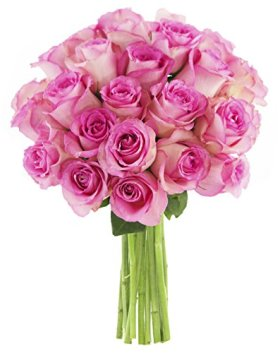 Shades of Pink Long Stemmed Roses (18 stems) – Without Vase