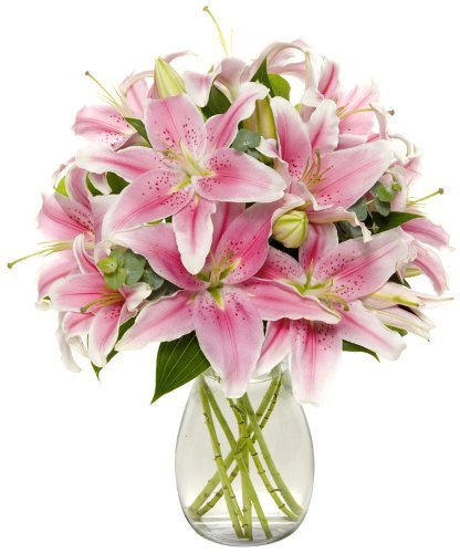 Shery Flowers Lily Bunch Eshopclub Fresh Flowers – Wedding Flowers Bouquets – Birthday Flowers – Send Flowers – Flower Arrangements – Floral Arrangements – Flowers Delivered