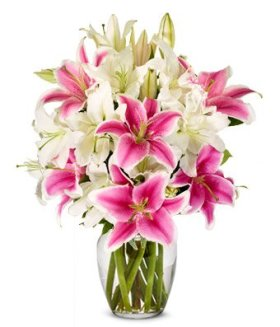 From You Flowers – White Lilies + Stargazer Lilies (Free Vase Included)