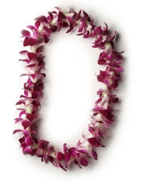 Hawaiian Lei – Fresh Single Strand Orchid Lei – Classic Purple