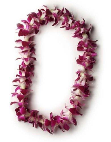Hawaiian Lei – Fresh Single Strand Orchid Lei – Classic Purple