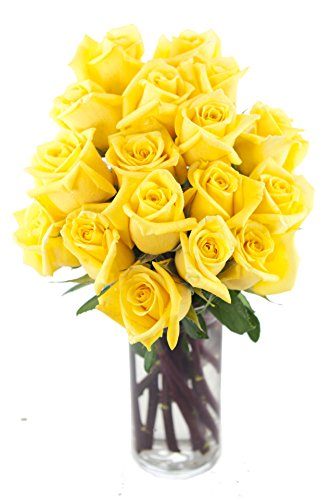 Bouquet of Long Stemmed Yellow Roses Dozen and a Half) – With Vase