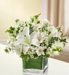 1-800-Flowers – Healing Tears – All White – Small