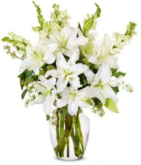 From You Flowers – Elegant White Lilly Arrangement (Free Vase Included)