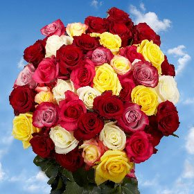 Mother's Day Flowers | Fresh Cut 50 Assorted Roses |25 Red Roses and 25 Only One Color Roses