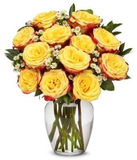 From You Flowers – Festive Rose Bouquet (Free Vase Included)