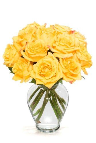 Benchmark Bouquets Dozen Yellow Roses, With Vase