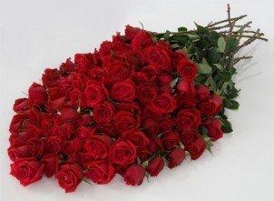100 Roses Red- Fresh Cut Flowers, 100 Long Stem Red Roses