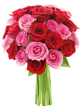 Bouquet of Long Stemmed Red and Pink Roses (Two Dozen) – The KaBloom Collection Flowers Without Vase