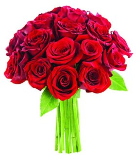 Bouquet of Long Stemmed Red Roses (Dozen and a Half) – Without Vase