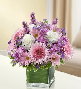 1-800-Flowers – Healing Tears – Lavender and White – Small
