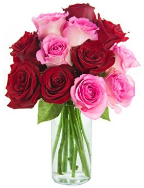 Bouquet of Long Stemmed Red and Pink Roses (Dozen) – With Vase