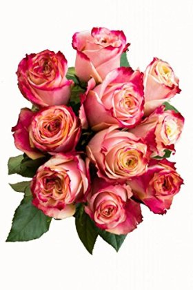 24 Stems – Fresh Cut Sweetness Pink and White Rose Bouquet from Flower Explosion