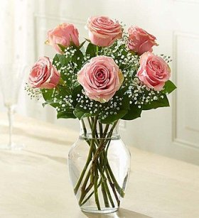 1-800-Flowers – Love's Embrace Roses – Pink
