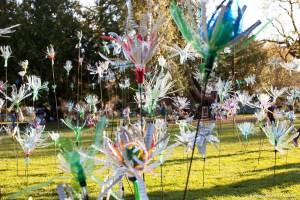 Flowers of Change de Pierre Estève, au festival des Détours de Babel