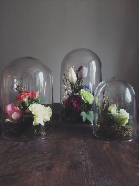 Bell jar family