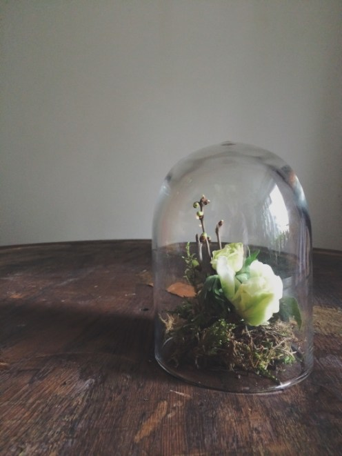 Small bell jar