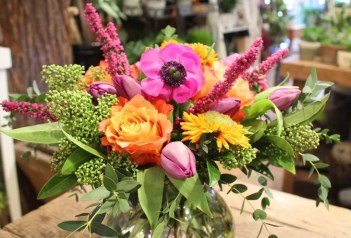 split-complementary coloured flowers