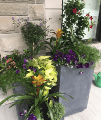 large concret planter