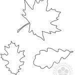 Autumn leaf outline template