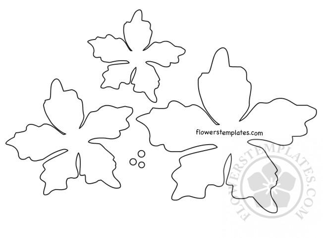 graphic regarding Poinsettia Pattern Printable identified as Poinsettia Flower Template Printable Bouquets Templates