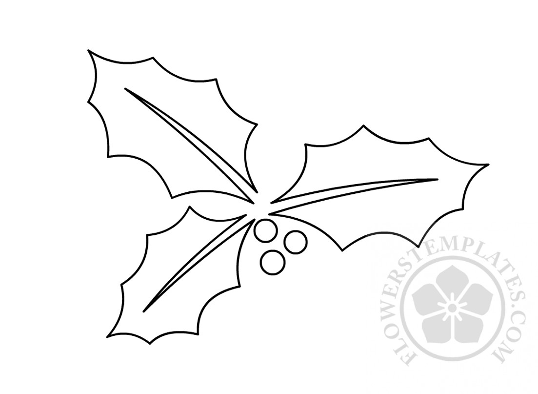 graphic regarding Leaf Cutout Printable named Holly Leaf Templates Printable Bouquets Templates
