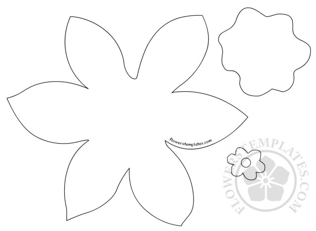 daffodil template printable pattern flowers templates