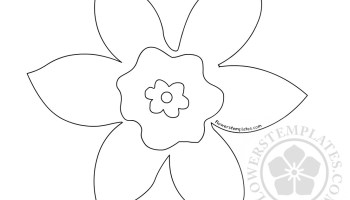 daffodil template coloring page