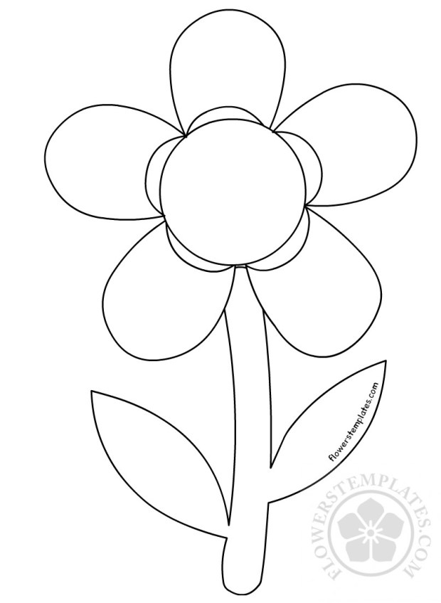 Flower Daisy Spring Outline