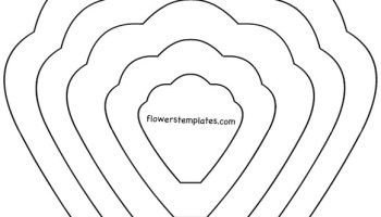 Tissue Paper Flower Petal Template | Flowers Templates
