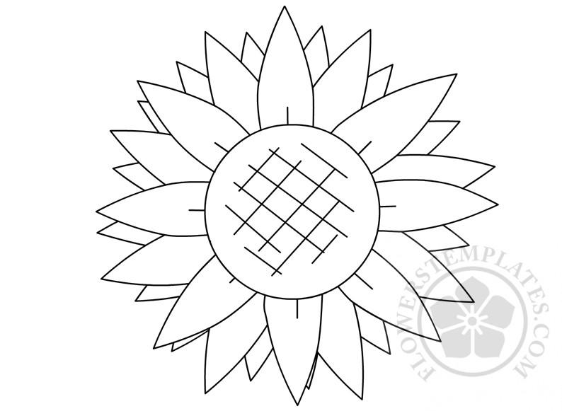 picture regarding Sunflower Petal Template Printable identify Printable Sunflower Condition Template Bouquets Templates