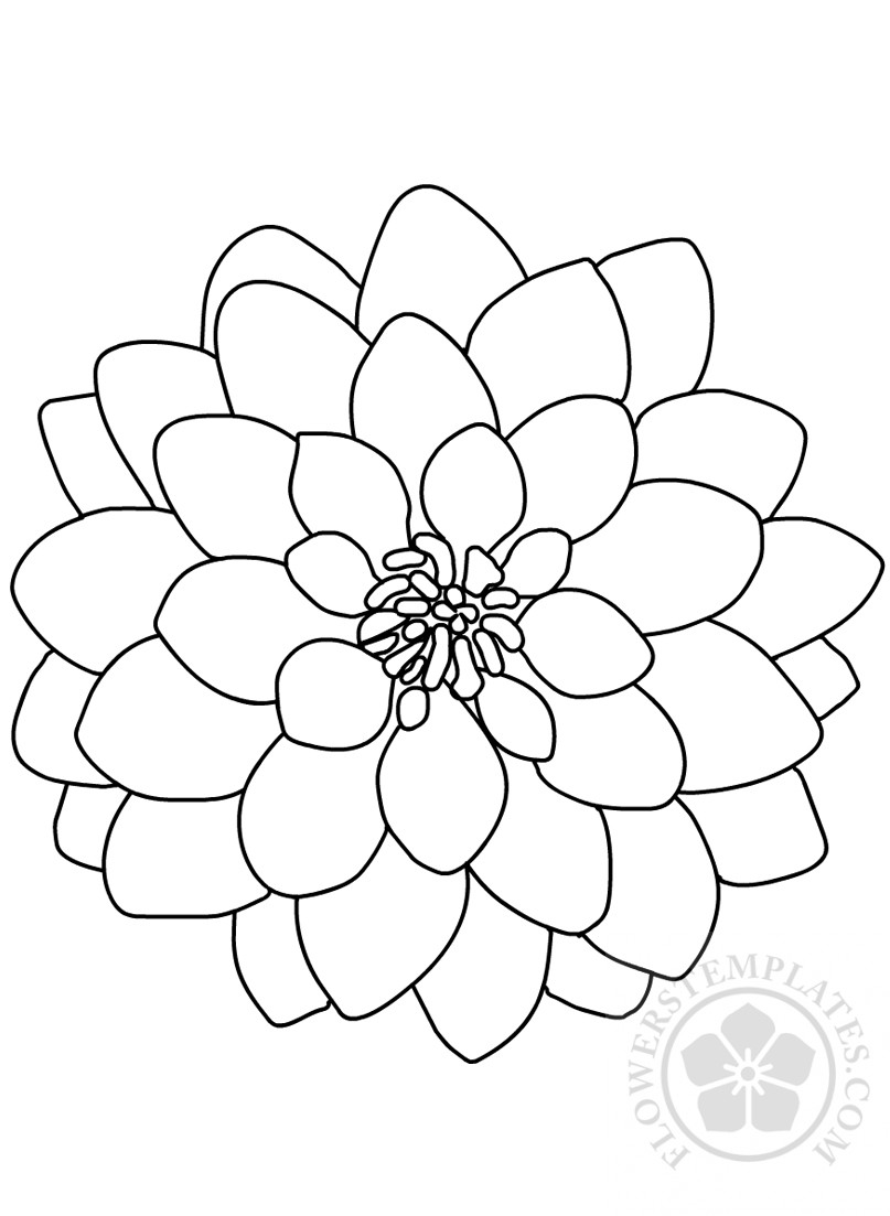 Dahlia flower coloring page Flowers
