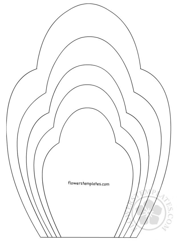 Printable Flower Petal Template Pattern Flowers Templates