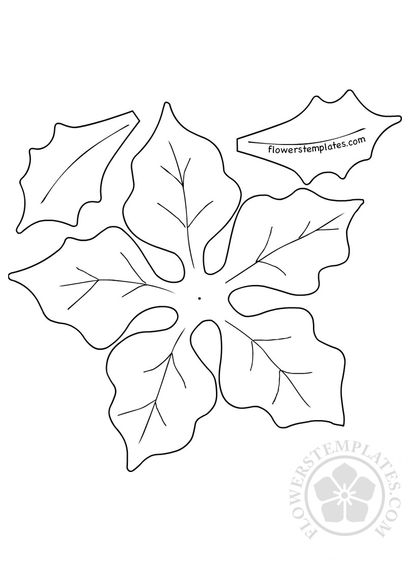diy paper christmas poinsettia template