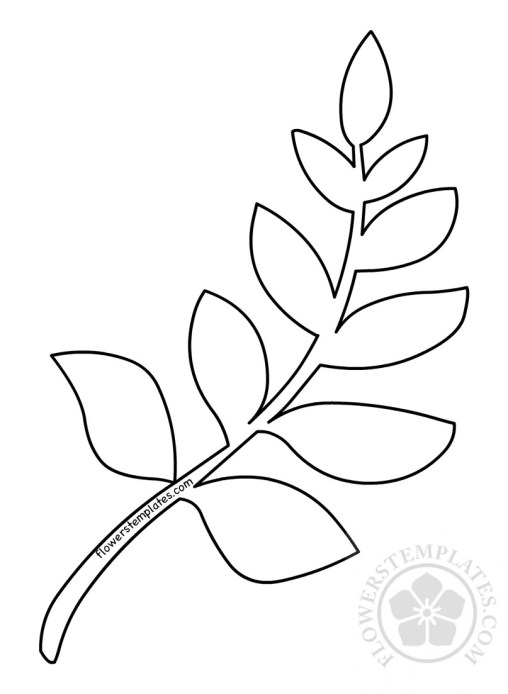Leaves Flowers Templates