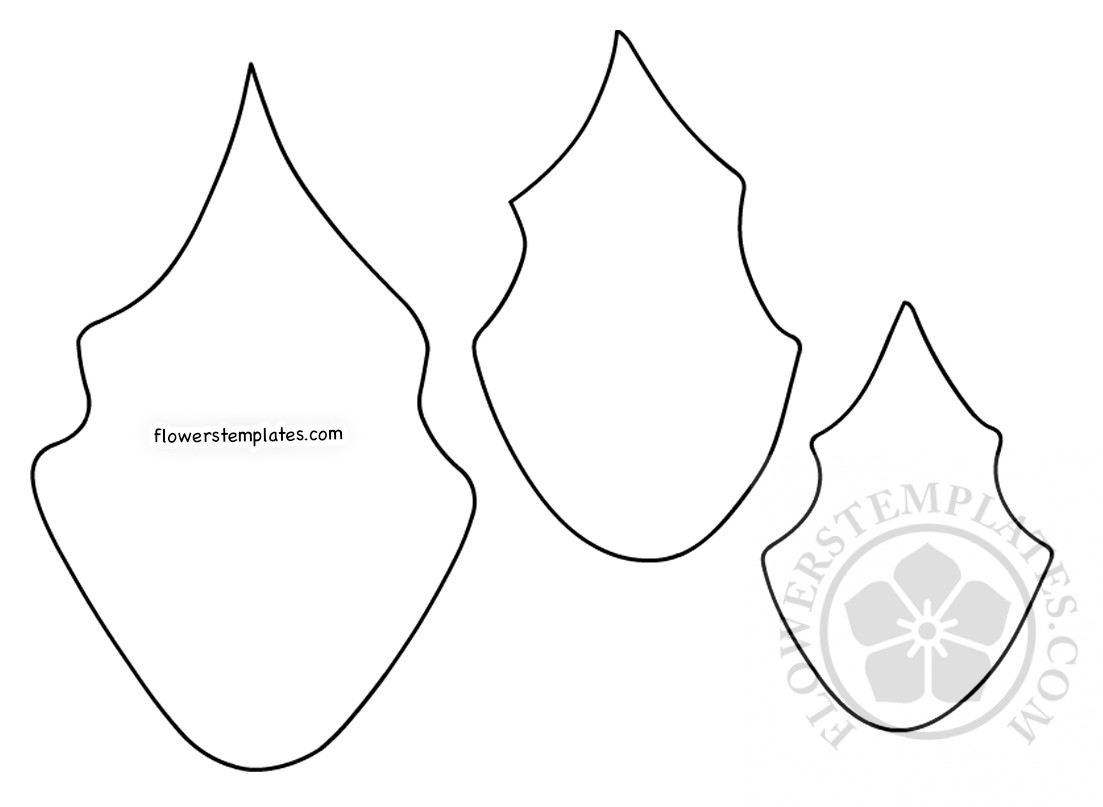 picture about Leaf Pattern Printable titled Paper Poinsettia Leaf habit printable Bouquets Templates