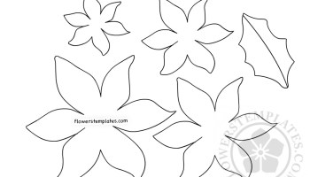 paper poinsettia leaf pattern printable flowers templates