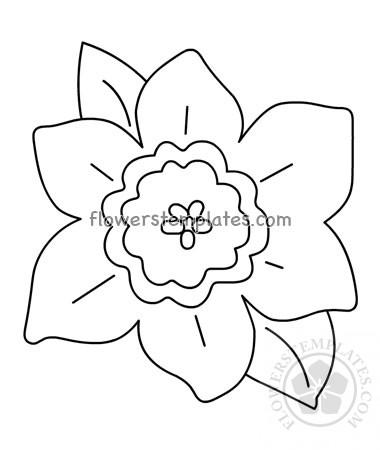 Daffodil shape