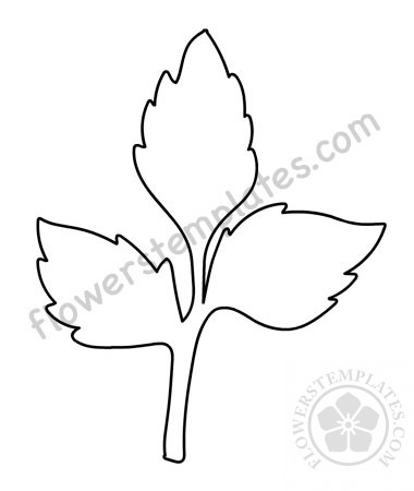 photograph relating to Leaves Stencil Printable identify Vector Rose Leaves printable Bouquets Templates