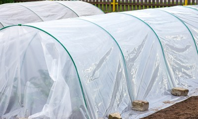 protect-garden-from-freezing-temperatures