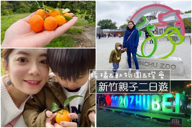 【親子二日遊】新竹採橘、燈會、看動物~簡單輕鬆的家庭小旅行(採砂糖橘+竹北燈會+新竹動物園)
