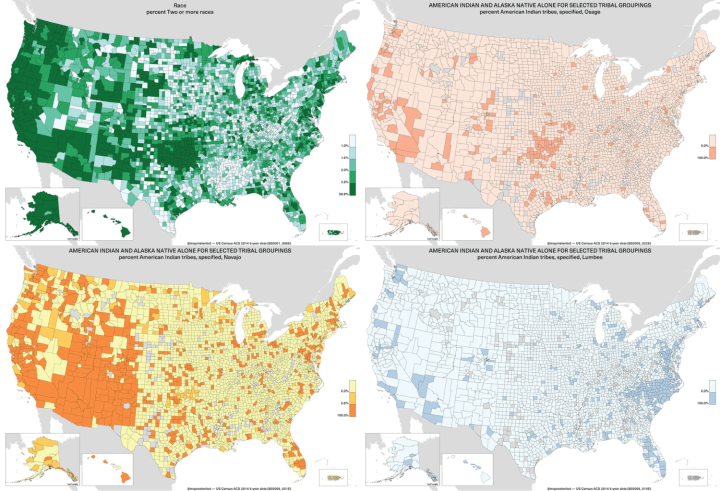 Bot automatically generates maps from American Community Survey data on