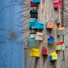 Bird Houses by See-Ming Lee via Flickr