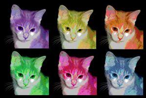 Data a la Warhol SuziJane by via Flickr